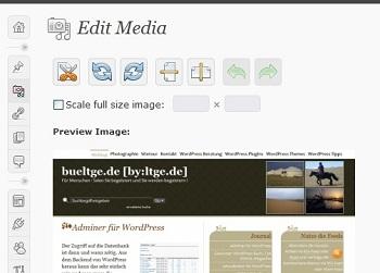 wp image editor 350